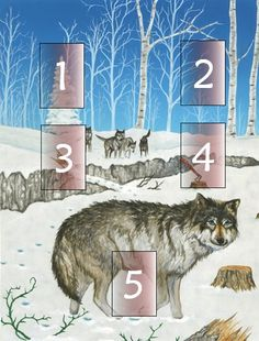 Lone Wolf Spread 1. What do I need to know about this rejection? 2. What will help me deal with these painful feelings? 3. What is beneficial about this situation? 4. What do I need to move on and heal? 5. Advice from the Lone Wolf