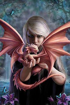 Anne Stokes Dragonkin Poster - Buy Online at Grindstore.com