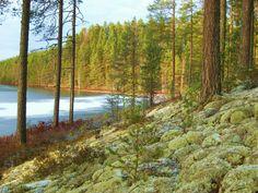 Lintharju eske, Rantalantie, Suomi