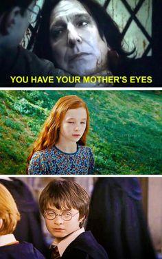 Harry Potter Tumblr, Harry Potter Comics, Harry Potter Mems, Images Harry Potter, Harry Potter Cast, Harry Potter Fandom, Harry Potter Funny Pictures, Funny Harry Potter Quotes, Harry Potter Parody