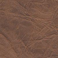 Profox - Fotografia Digital (Taguatinga e Sobradinho) - Revestimentos - Couríssimo - Couríssimo Marrom