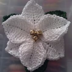Ravelry: Poinsettia. Christmas flower by Celia