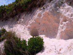 The Pink Sand of Bermuda.. visited many times... can't what to go back