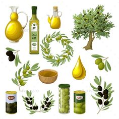 Cartoon olive oil elements set with tree branches wreath pitchers cans jars drop bowls isolated vector illustration. Editable EPS