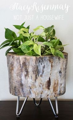 10 DIY Planters to Spark Your Creativity