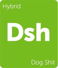Leafly Dog Shit cannabis strain