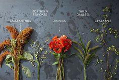 Fall Arrangement Flowers