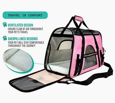 """Maggie Mae's new airline approved pet carrier from Amazon!"""