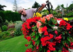 Green-fingered Stuart Grindle, spends 30 hours a week pruning, weeding and trimming his stunning garden at his and wife Anne's home in Rotherham, Yorkshire. Outdoor Rooms, Outdoor Plants, Garden Gates, Where The Heart Is, Amazing Flowers, How To Raise Money, Container Gardening, Britain, Lawn