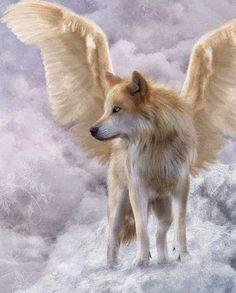 """Honra a todos los que ya se fueron. """"A todos aquellos que partieron,  que dejaron nuestros corazones rotos, a todos aquellos que amamos, que fueron, son y serán parte de nosotros. Que allí donde estén, su sueño sea de paz y alegría, que por donde salten o caminen sean verdes campiñas. A mi fiel y amado perro, aquel que fue mi guardián, el que escuchó mis sollozos, y limpio mi rostro de lágrimas. A mi Maestro y mi Guía, aquel que siempre me enseñó, que sólo hay un camino en la vida, y no es…"""