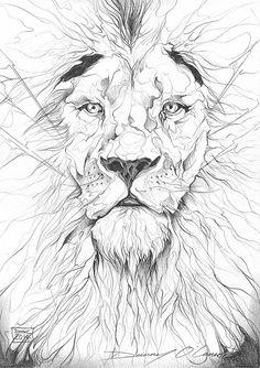 Lion Portrait Sketch by Art By Doc, via Flickr