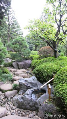 Настоящий японский сад. Токио 30.10.16: Группа Беседка «Дачная жизнь»