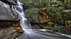 Tipperary Falls, Hunters Hill NSW