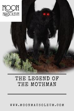 The legend of the Mothman Mothman Sightings, The Mothman Prophecies, Towns In West Virginia, The Omen, Strange Tales, Weird Dreams, Penny Dreadful, Monster S, Black Men