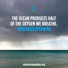 The ocean produces half of the oxygen we breathe.  www.natureisspeaking.org/theocean | #NatureIsSpeaking