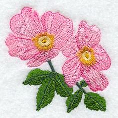 Machine Embroidery Designs at Embroidery Library! - All State Flowers - Prairie Rose