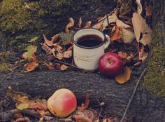 http://data.whicdn.com/images/41781617/tea_time_in_the_forest_by_cezare_me-d5fo6p6_large.jpg