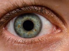 Το σύστημα μετατρέπει τις εικόνες σε ηλεκτρικά σήματα που διαβιβάζονται απευθείας στον οπτικό φλοιό του εγκεφάλου. Από τα 40 εκατομμύρια ανθρώπους που ζουν χωρίς όραση σε όλο τον κόσμο, πολλοί δεν πάσχουν από βλάβες στα μάτια αλλά από βλάβες στο οπτικό νεύρο. Για τους ασθενείς αυτούς, ένα νέο εγκεφαλικό εμφύτευμα μπορεί μελλοντικά να δώσει λύση. […] Περισσότερα Εγκεφαλικό εμφύτευμα υπόσχεται όραση στους τυφλούς Wtf Fun Facts, Funny Facts, Random Facts, Random Stuff, The More You Know, Good To Know, Eye Facts, Human Eye, Things To Know