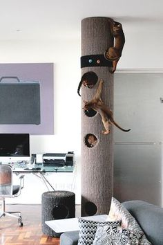 Starts at around $200 Hicat climbing system for cats fully customized Fat Tom4