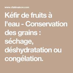Kéfir de fruits à l'eau - Conservation des grains : séchage, déshydratation ou congélation.