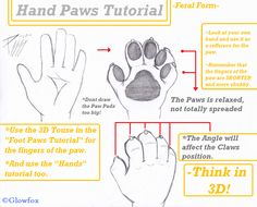 *Feral Hand Paws-Tutorial-* by The_Furry_Art_Academy -- Fur Affinity [dot] net