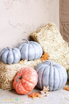Make ordinary pumpkins from the craft store look like galvanized metal by following the simple steps in this tutorial. You can make them for a fraction of the price of buying the real thing!
