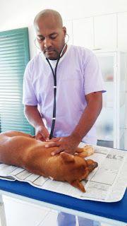 BONDE DA BARDOT: Mutirão de castração gratuita realizará mais de 200 cirurgias em Iturama, no interior de Minas Gerais (18 e 19/06)