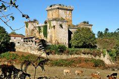 GALICIA .Castelo de Pambre  Palas de Rei, Lugo.  En torno al año 1375. En el siglo XIX, el duque de Alba lo vendió a un vecino de Palas de Rei.