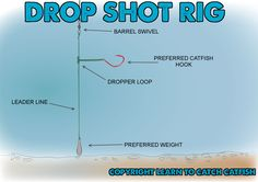 Drop shot rig for catfish.