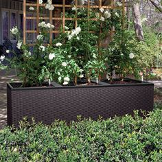Lechuza Cottage Patio Planter Self-watering Sub-irrigation system