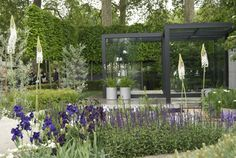 "Cattis и Eira в Garden Design: Ульф Nordfjell должны сделать ""Шампанское Laurent-Perrier"" idéträdgård на Chelsea Flower Show Chelsea London, Colorful Plants, Colorful Garden, Garden Show, Summer Garden, Green Garden, Scandinavian Garden, Laurent Perrier, Planting Plan"