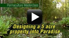 A series of free videos from permaculture great, Geoff Lawton, eg, How to turn a 5 acre property into a Permaculture Paradise on a tight budget, with a running tally of the earthworks costs and water stored.