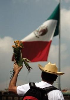 Mexico-Ground Zero in The Fight Against Monsanto For The Future Of Maize. http://truth-out.org/news/item/16335-mexico-ground-zero-in-the-fight-against-monsanto-for-the-future-of-maize