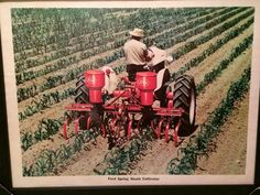 Agriculture, Farming, Ford Tractors, Antique Tractors, Poster Ads, Vintage Farm, Old Farm, Ih, Cool Trucks
