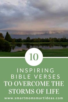 Are you in a storm of life and wonder what to do next? These 10 encouraging Bible verses to handle adversity and bible verses to handle difficulty will give you hope. Inspirational Verses, Encouraging Bible Verses, Scripture Verses, Scriptures, Christian Encouragement, Encouragement Quotes, Storm Quotes, Overwhelmed Mom, Working Mom Tips