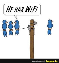 WiFi - HAUSK.in