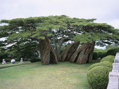Between architecture, sculpture and land art, I invite you to discover the impressive vegetal constructions from Patrick Dougherty, an American artist who is Tree Sculpture, Outdoor Sculpture, Stone Sculptures, Garden Sculpture, Natural Architecture, Art And Architecture, Land Art, Bio Design, Art Environnemental