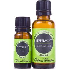 The Top 10 Magical Uses Of Peppermint Oil