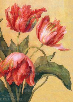 Editor: Blue Lantern Publishing Flowers Illustrator: Unknown Imprint: Laughing Elephant'
