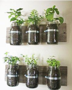metal rings on a reclaimed window for instant indoor herb garden
