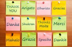 Het Nederlands is mijn moedertaal. De Engelse taal beheers ik uitstekend, Frans ga ik opfrissen en Duits zou ik graag weer willen leren.