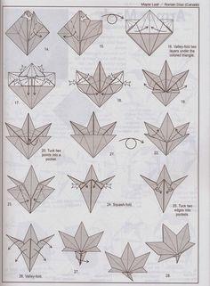 maple+leaf2.JPG (904×1230)