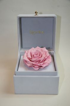 Most special Mother's Day gift ever! Check out our latest preserved pink rose gift box.
