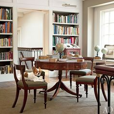 A Chihuahua strikes a dignified pose on a circa-1830s English chair in the library of a relaxed yet elegant Long Island retreat decorated by designer Mariette Himes Gomez.