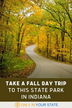 Take a fall day trip to Brown County State Park in Indiana and enjoy the beautiful foliage. Enjoy scenic drives, hiking trails, and more.