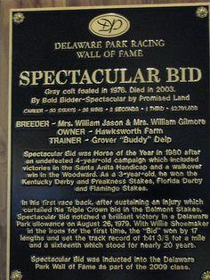 Spectacular Bid....on the Wall of Fame@Delaware Park....photo by me(Elaine Kucharski)