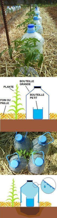 Le goutte à goutte solaire est un système d'arrosage très efficace, simple … Eco Garden, Terrace Garden, Edible Garden, Garden Plants, Diy Jardim, Micro Irrigation, Drip Irrigation, Urban Farming, Aquaponics