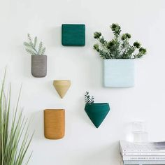 Shop for Modern Home Wall Decor Planters 6 Set Morandi Color Ceramic Hanging Geometric Wall Decor Container - Great Succulent Plants, Air Plant, Fau Faux Succulents, Faux Plants, Small Plants, Planting Succulents, Succulent Plants, Succulent Terrarium, Garden Terrarium, Garden Planters, Herb Garden