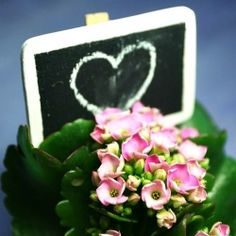 Make little chalkboard signs to go with plants for Mother's Day- use painter's pin and have children write message.