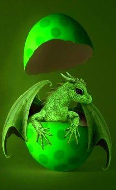 """I am a green dragon. Fear me if you dare"" ~ By TwilightDeathWish"